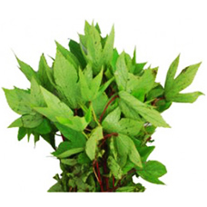 Gongura Leaves Bunch