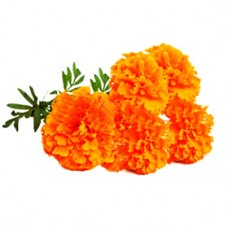 Marigold Flower 100 gm